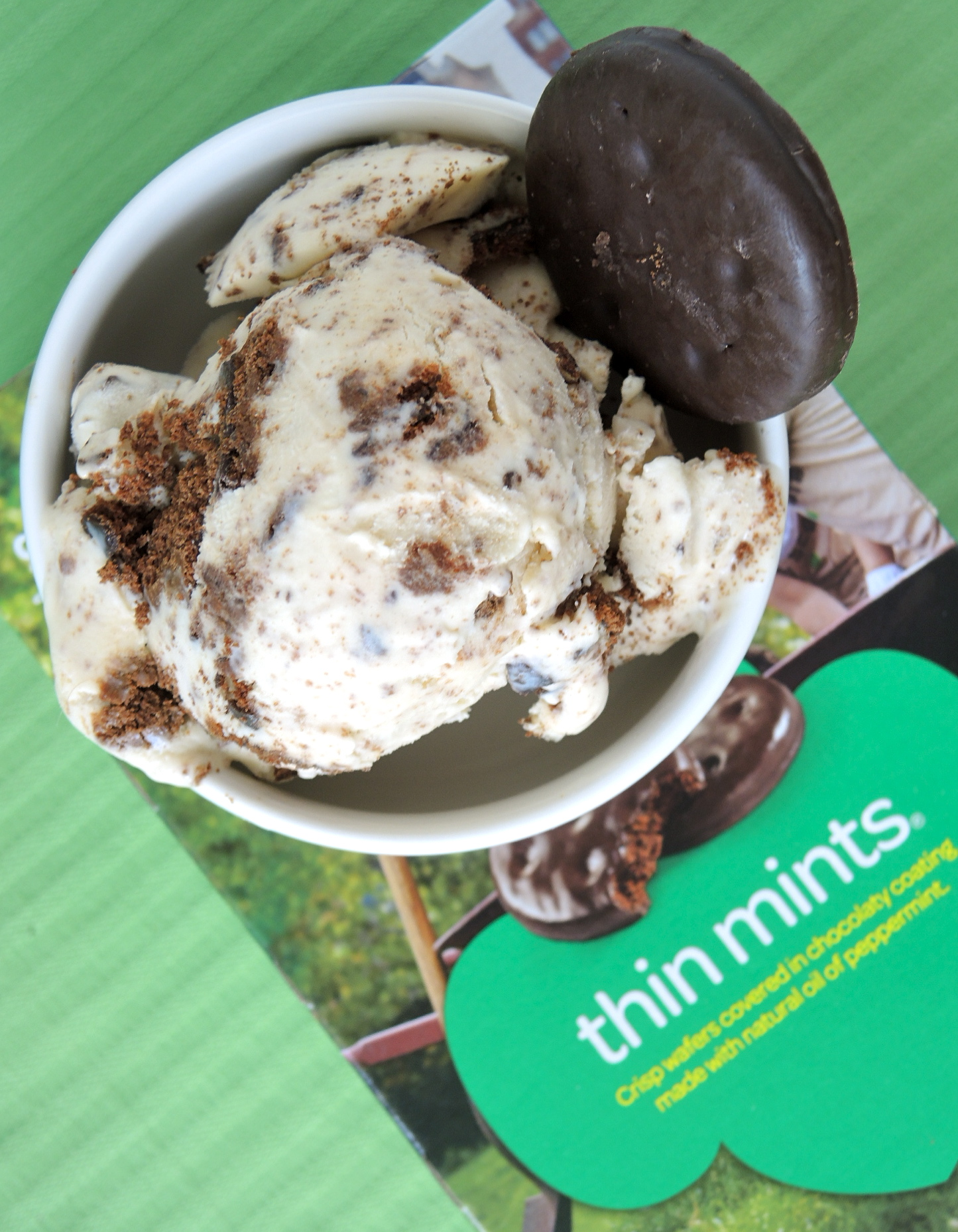 Ice Cream Sunday – Thin Mint Ice Cream