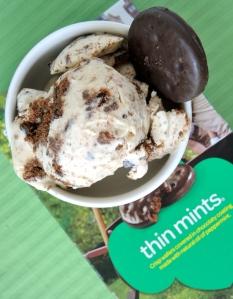 Thin Mint Ice Cream